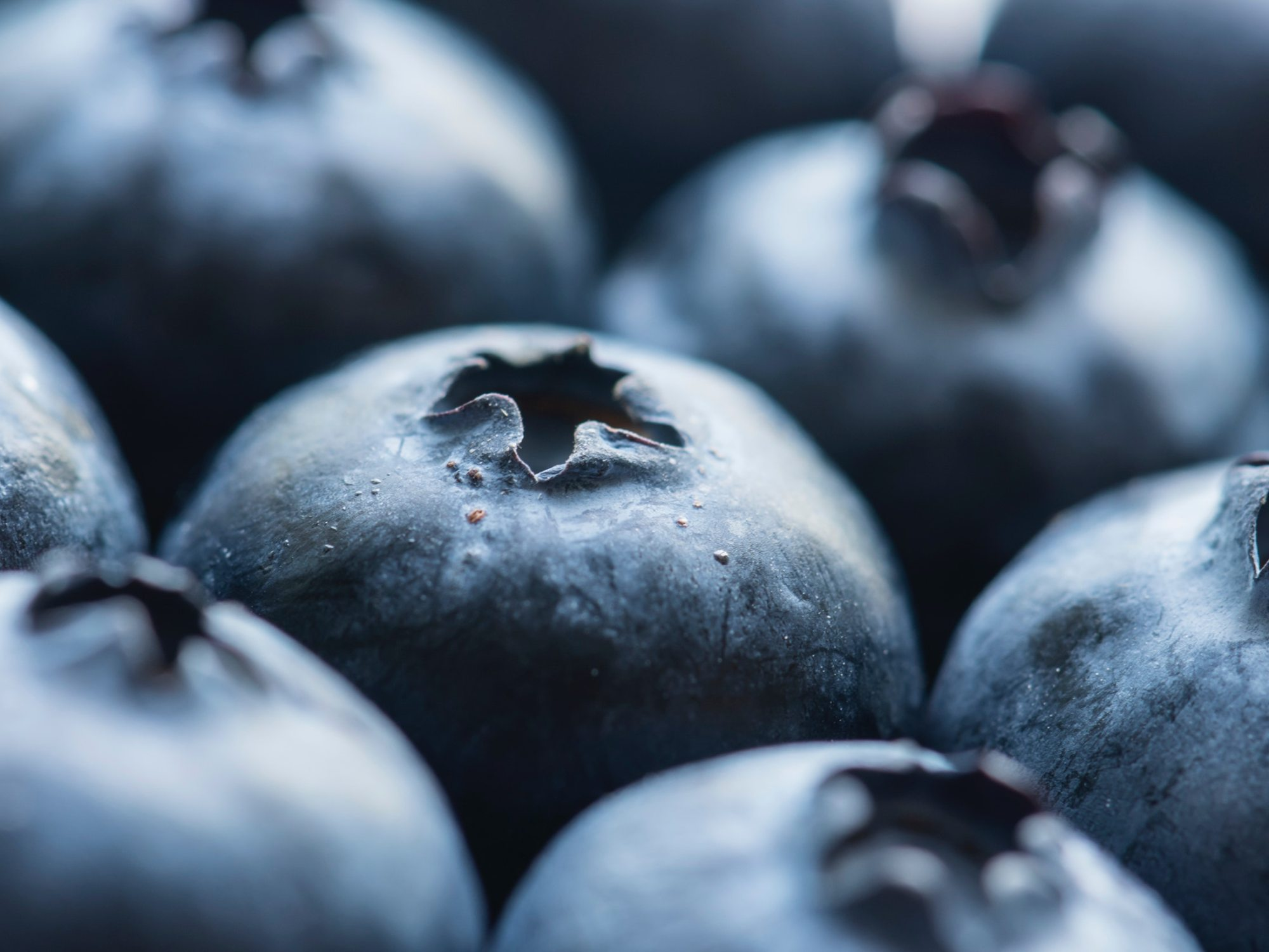 antioxidant-berries-blueberries-afro-glory-mental-health-awareness-week-stress-relief